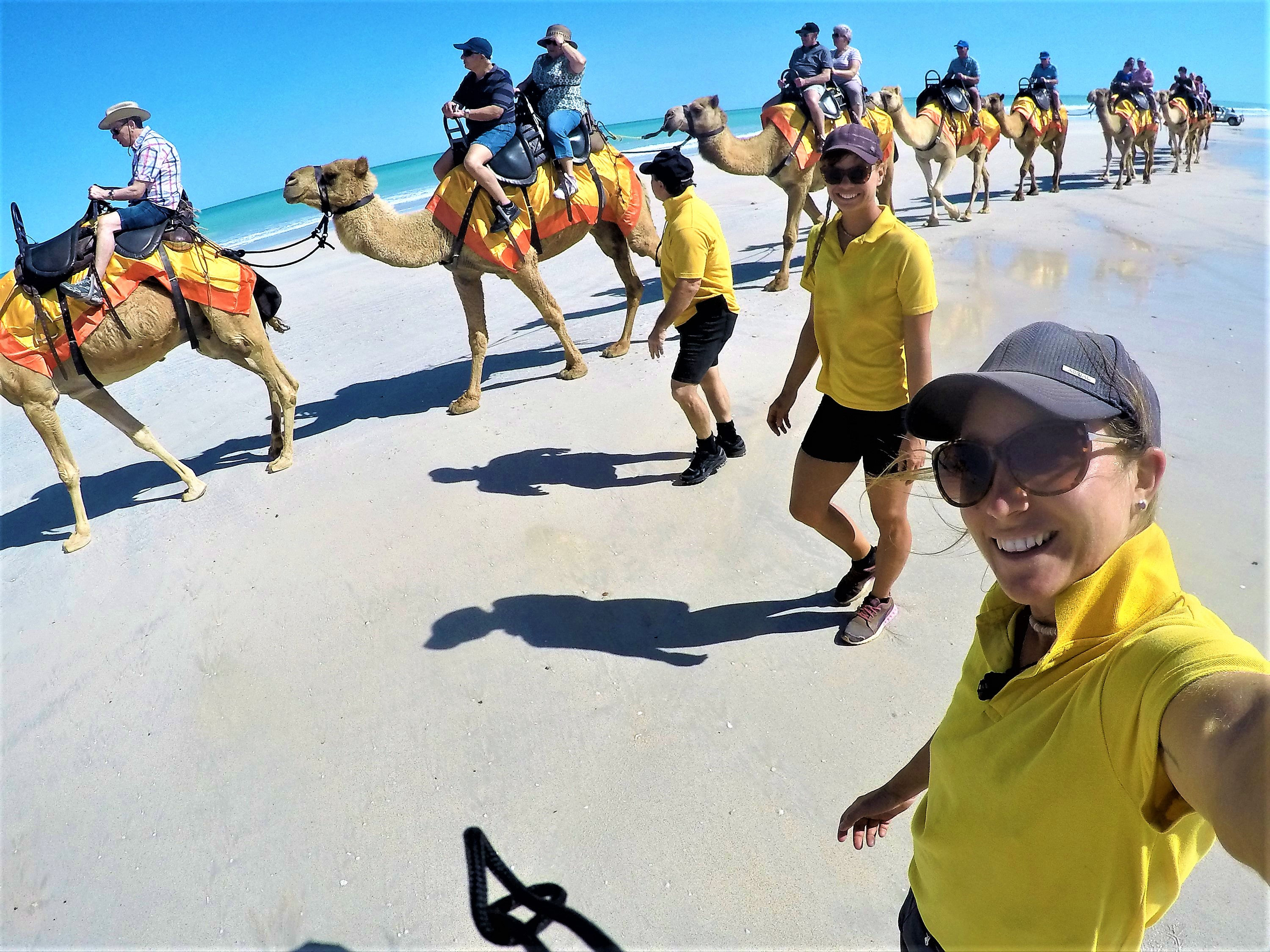 Camel tours Broome